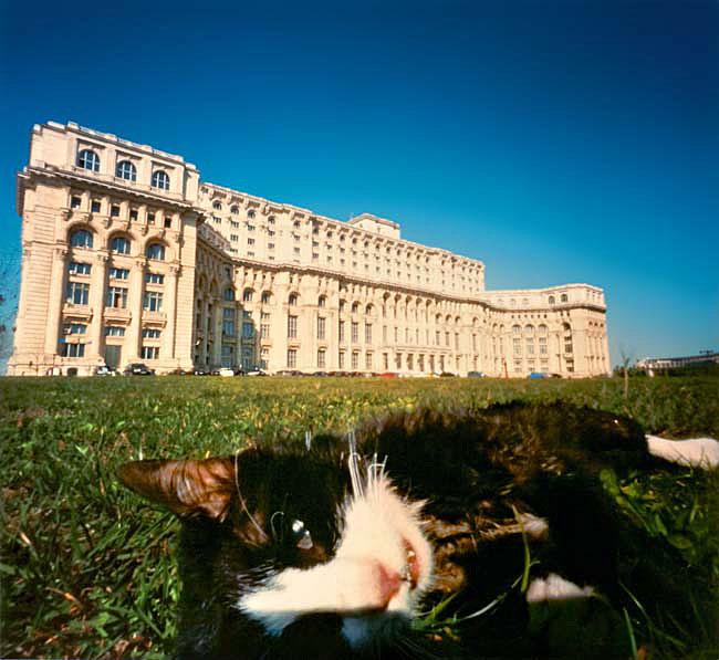 """""""Palatul Parlamentului"""" 2010; 106 x 106 cm, C-Print"""
