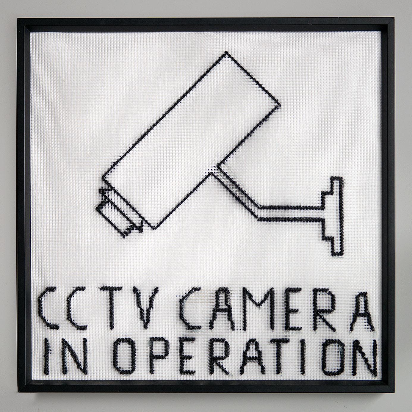 """CCTV"" 2014; 24 x 28 cm"
